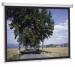 Цены на Projecta SlimScreen 180x180 Matte White (10200063) Артикул производителя 44086 Диагональ 96 дюйм. Длина экрана 180 см Высота экрана 180 см Поверхность экрана Matte White Вес 6 кг Projecta SlimScreen 180x180 Matte White (10200063)
