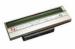 Цены на Zebra Печатающая головка 203 dpi,   для GC420d,   LP2844,   LP284Z