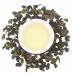 Цены на RealChina Tea Чай RealChina Tea,   Молочный Улун Молочный улун – это,   без сомнения,   один из наиболее популярных китайских чаев в России! В чем секрет такой популярности? Наверное,   в том,   что он яркий,   легкий и позитивный! Молочный улун понравится всем или п