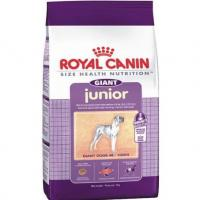 Фото Royal Canin Giant Adult 4 кг