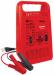 Цены на Fubag Автоматическое зарядное устройство FUBAG RAPID 120/ 12