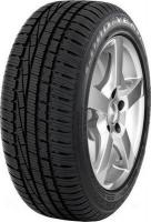 Goodyear UltraGrip Performance (205/50R17 93V)