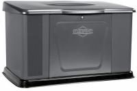 Briggs&Stratton 14 kW Standby Generator
